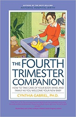 Fourth Trimester Companion cover